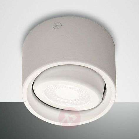 Kantelbare kop - LED downlight Anzio