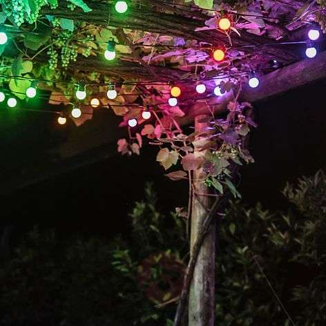 LED-party-lichtketting Twinkly Festoon start set