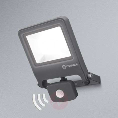 LEDVANCE Endura Floodlight sensor LED spot 30 W