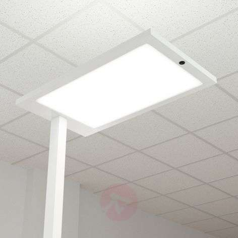 Office LED vloerlamp Almira, dimmer en sensor